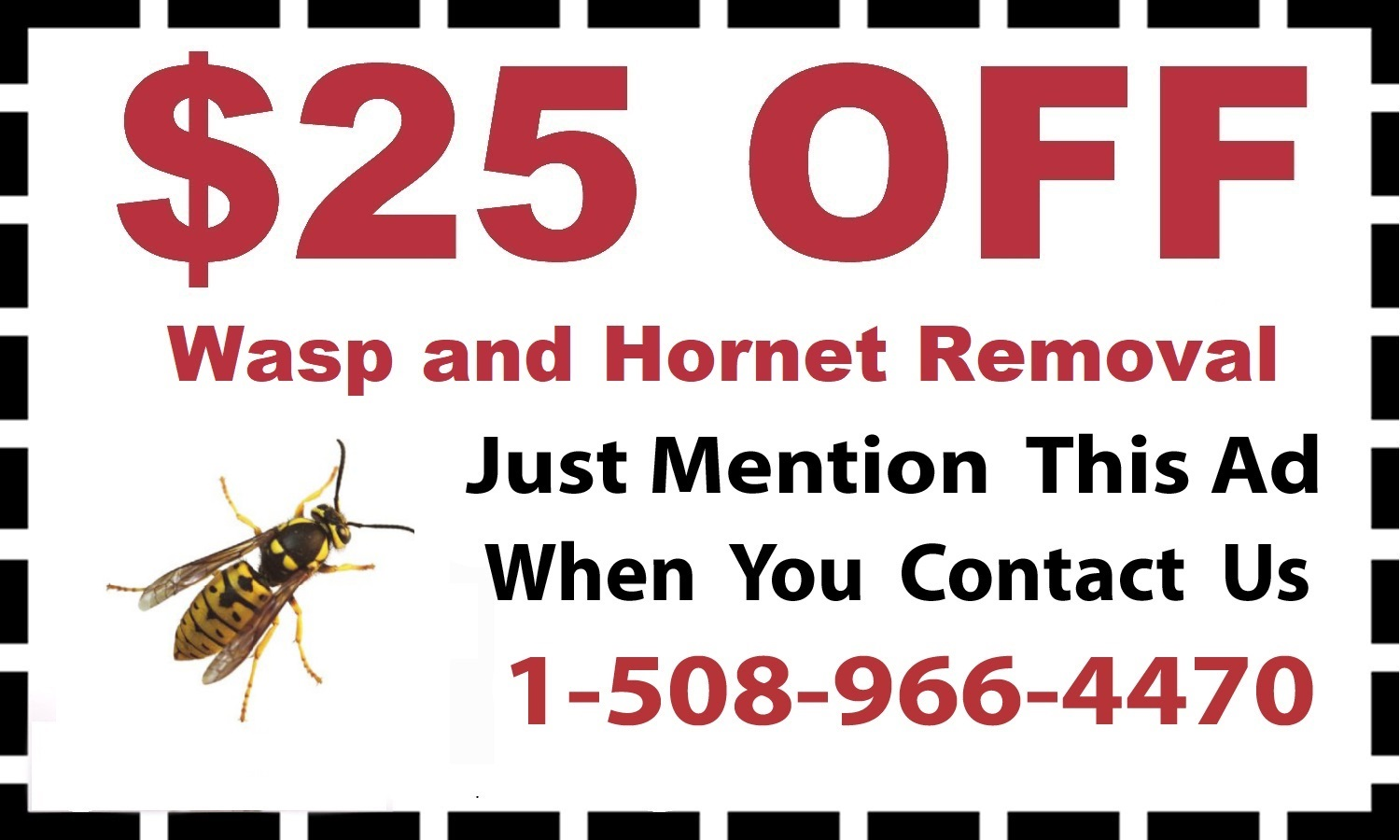 Bees Removal Service in Framingham MA