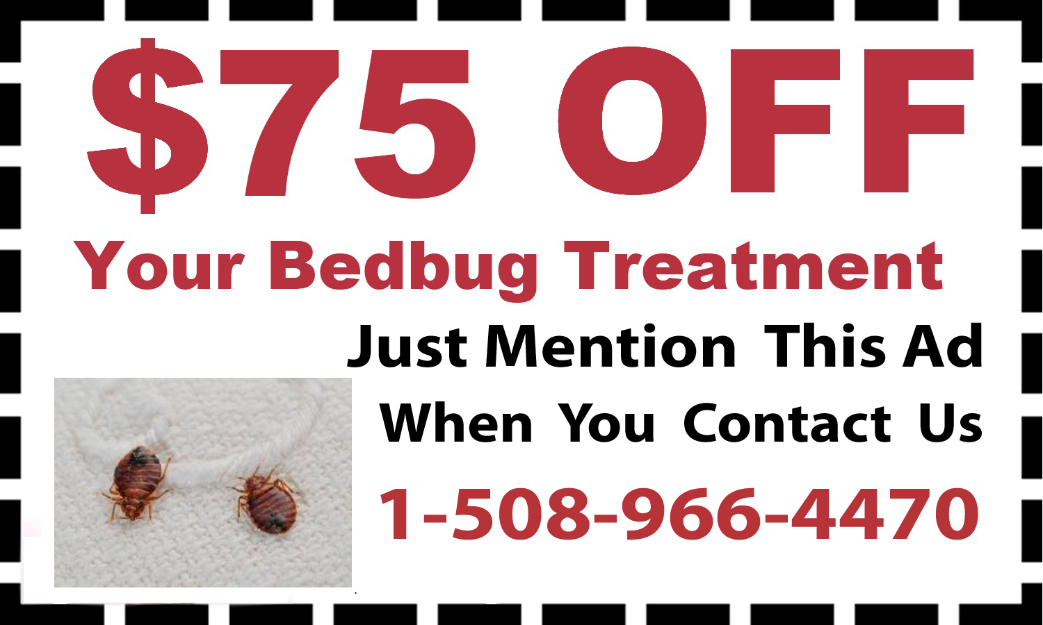 BedBug Treatment Cumberland, MA