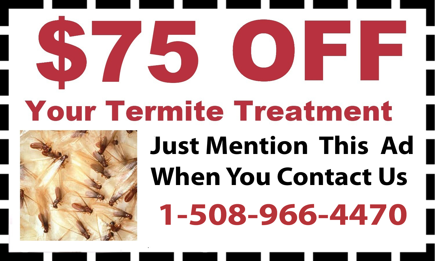 Wellesley, MA Termite Control Coupon
