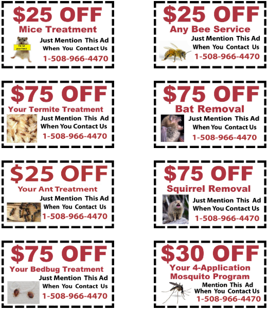Hopedale MA Pest Control Coupons for Exterminator Services